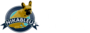 Nika Bleu Marketing SmallBusinesses
